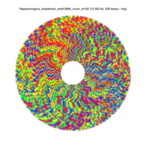 Repeat sequence represented in a circular fashion